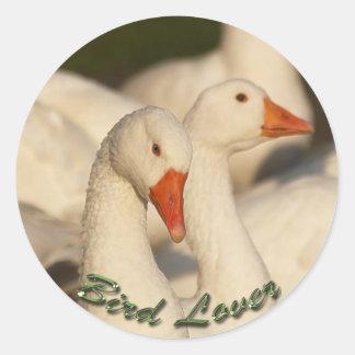 Wild White Geese Bird Wildlife Sticker