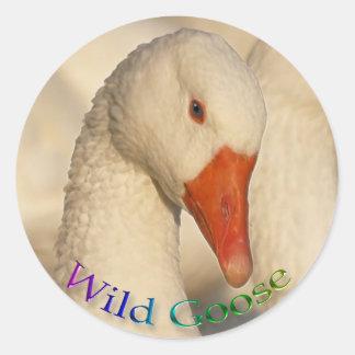 Wild White Goose Bird Wildlife Sticker