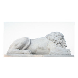 Wild White Lion Stone Statue Sculpture Photography Card