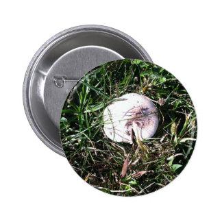 Wild White Mushroom 1 Pinback Button