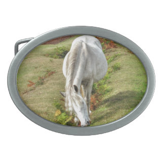 Wild White New Forest Pony Grazing on Heath Oval Belt Buckle