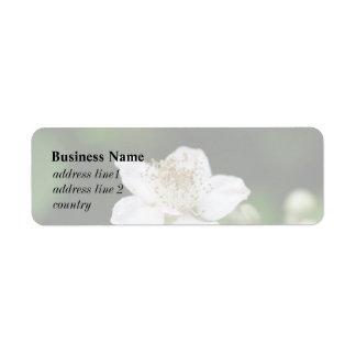 Wild white raspberry flower. label