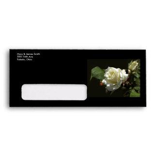 Wild White Rose Envelopes