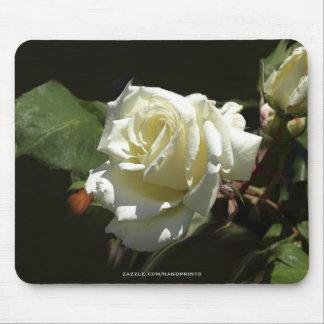 Wild White Rose Mousepads