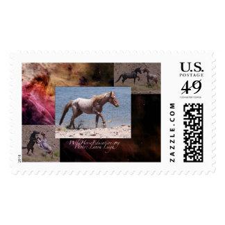 Wild, wild horses postage stamp