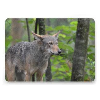 Wild Wolf Custom Invitations