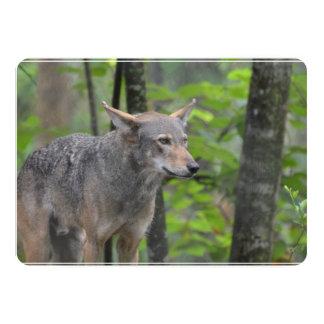 Wild Wolf 5x7 Paper Invitation Card