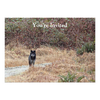 Wild Wolf Photo Custom Announcement