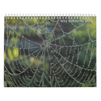 Wild Wonderful Webs Calendar