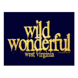 Wild Wonderful West Virginia-Yellow Post Cards
