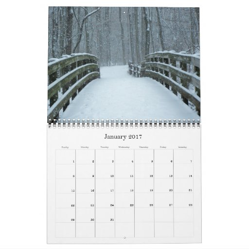 Wild Wonders 2012 Calendar