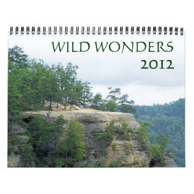 Wild Wonders 2012 Wall Calendars
