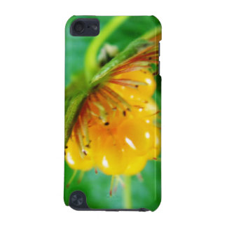 wild yellow berry iPod touch 5G case