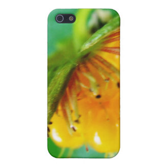 wild yellow berry nature gift cover for iPhone SE/5/5s