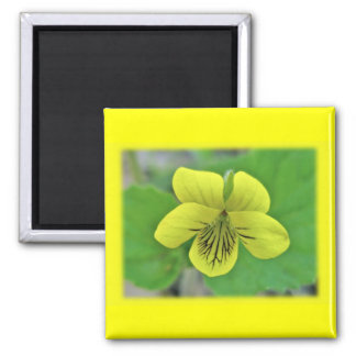 Wild Yellow Violet Coordinating Items Magnet