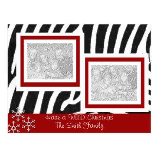 Wild ZEBRA Christmas Postcard