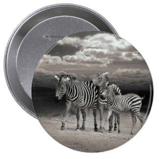 Wild Zebra Socialising in Africa Button