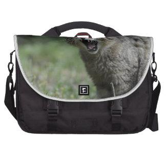wildcat-3 bag for laptop
