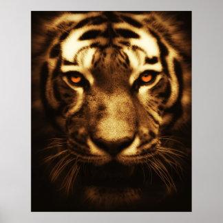 Wildcat Animal Portrait Poster
