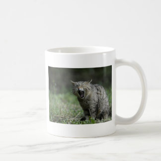 Wildcat Classic White Coffee Mug