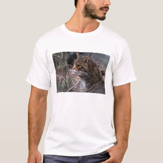 Wildcat Contentment 2 apparel T-Shirt