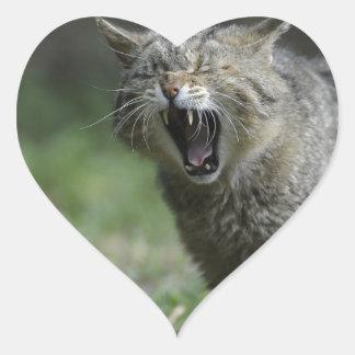 Wildcat Heart Sticker