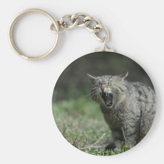Wildcat Keychain