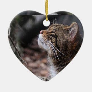 Wildcat Moods ornament