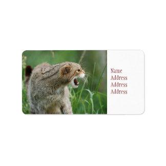 ¡WILDcat no llamado para nada! etiquetas de Etiquetas De Dirección