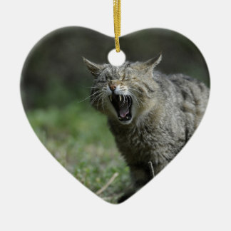 Wildcat Double-Sided Heart Ceramic Christmas Ornament