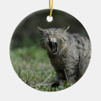 Wildcat Double-Sided Ceramic Round Christmas Ornament