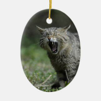Wildcat Double-Sided Oval Ceramic Christmas Ornament