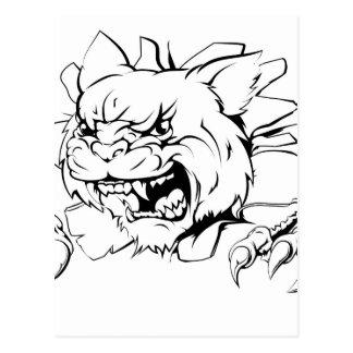 Wildcat ripping through wall postcard
