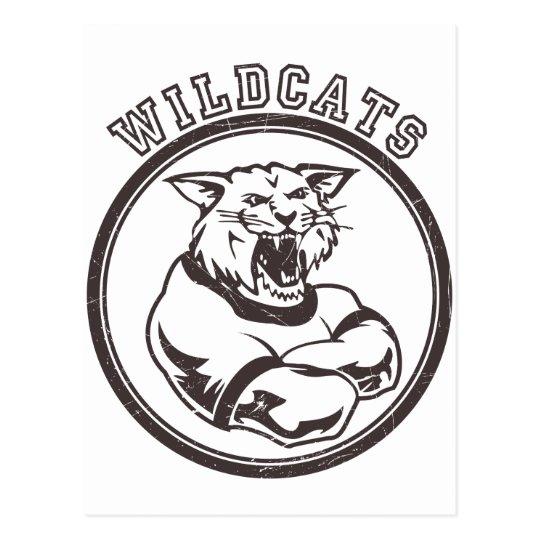 Wildcats Mascot Postcard