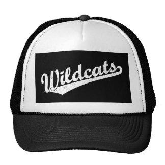 Wildcats script logo in gold in white trucker hat