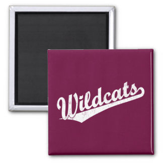 Wildcats script logo in gold in white magnet