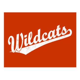 Wildcats script logo in gold in white postcard