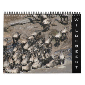 wildebeest 2021 calendar