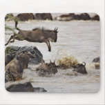 Wildebeest jumping into Mara River during Mouse Pad