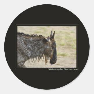 Wildebeest migration Kenya wildlife safari sticker