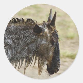 Wildebeest migration Kenya wildlife stickers