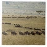 Wildebeest o Gnu Blanco-barbudo, Connochaetes 2 Azulejo Cuadrado Grande