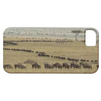 Wildebeest o Gnu Blanco-barbudo, Connochaetes 2 Funda Para iPhone 5 Barely There