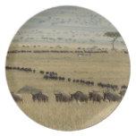 Wildebeest o Gnu Blanco-barbudo, Connochaetes 2 Platos De Comidas