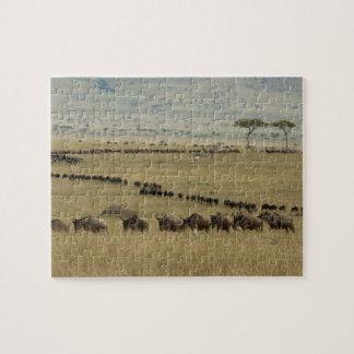 Wildebeest o Gnu Blanco-barbudo Connochaetes 2 Puzzle