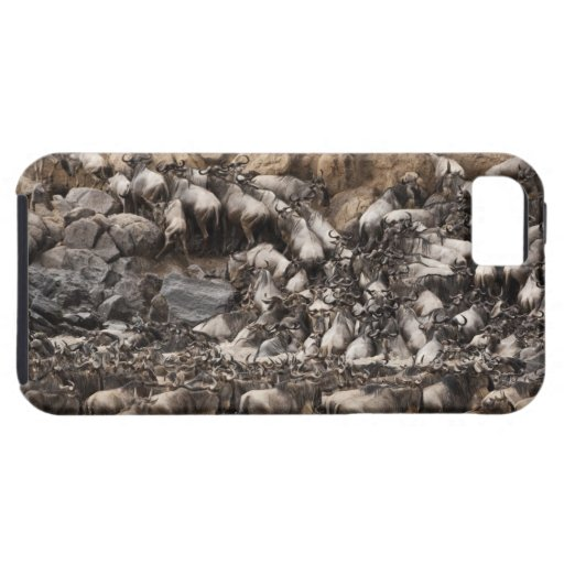 Wildebeest o Gnu Blanco-barbudo, Connochaetes iPhone 5 Funda