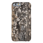 Wildebeest o Gnu Blanco-barbudo, Connochaetes Funda Para iPhone 6 Barely There