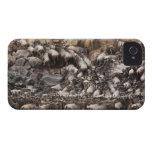 Wildebeest o Gnu Blanco-barbudo, Connochaetes iPhone 4 Case-Mate Protector