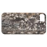 Wildebeest o Gnu Blanco-barbudo, Connochaetes iPhone 5 Carcasa