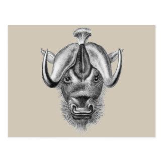 Wildebeest Postcard
